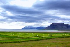 Icelandic Rural Landscape. Stock Photography