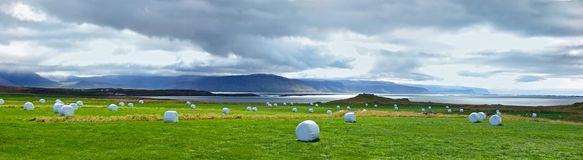 Icelandic Rural Landscape. Royalty Free Stock Photography