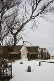 Icelandic turf houses with tree in winter Stock Photography