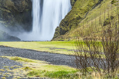 Icelandic waterfall. Gorgeous waterfall in South Iceland Royalty Free Stock Photos