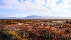 Icelands szeroki krajobraz fotografia stock