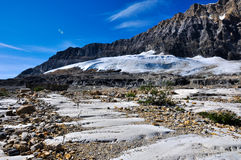 Iceline trail in Yoho National Park along with glaciers, British Royalty Free Stock Photography