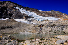 Iceline trail in Yoho National Park along with glaciers, British Stock Photography