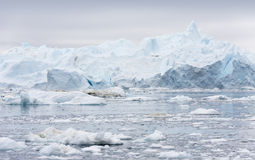Ices and icebergs of polar regions of Earth. Stock Photos