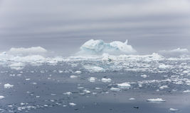 Ices and icebergs of polar regions of Earth. Stock Images