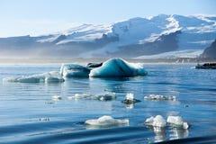 Ices que flota en el agua Imagen de archivo libre de regalías