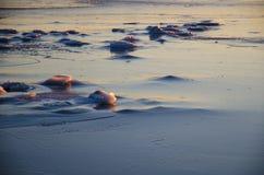 Icescape vid kusten royaltyfri bild
