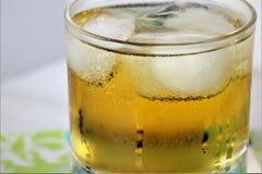 Icey kall uppfriskande drink med kondensation och is royaltyfri fotografi