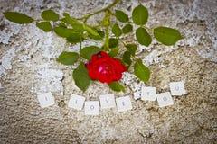 Ich liebe dich Buchstaben Stockbilder