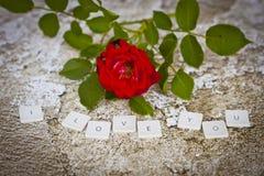 Ich liebe dich Buchstaben Stockfoto