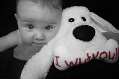 Ich liebe meinen Teddybären Stockfotos