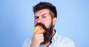 Ich Liebesäpfel bemanne den hübschen Hippie mit langem Bart Apfel essend Saftiger reifer Apfel der hungrigen Bisse des Hippies Ma Lizenzfreie Stockfotografie