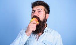 Ich Liebesäpfel bemanne den hübschen Hippie mit langem Bart Apfel essend Saftiger reifer Apfel der hungrigen Bisse des Hippies Fr Lizenzfreie Stockbilder