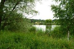 Ich schützte Seen mit einem Baum Lizenzfreies Stockfoto