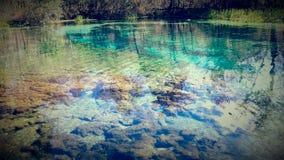 Ichnetuctnee-Frühlinge Stockfotografie
