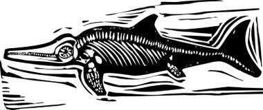 Ichthyosaur-Dinosaurier-Fossil B Stockfoto