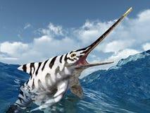 Ichthyosaur Eurhinosaurus Royalty Free Stock Photography
