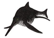 Ichthyosaur Shonisaurus Obrazy Stock