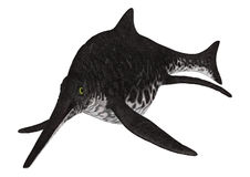 Ichthyosaur Shonisaurus Stock Afbeeldingen