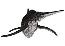 Ichthyosaur Shonisaurus Zdjęcia Royalty Free