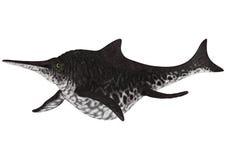 Ichthyosaur Shonisaurus Royalty Free Stock Photos