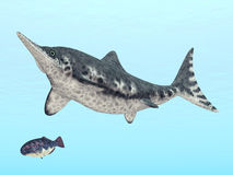 Ichthyosaur Stenopterygius Stock Photo