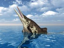 Ichthyosaur Stenopterygius Stock Image