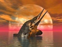 Ichthyosaur Stenopterygius Royalty Free Stock Photo