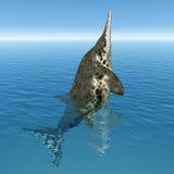 Ichthyosaur Stenopterygius Royalty Free Stock Photos