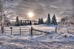ici l'hiver Photographie stock libre de droits