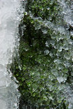 Icicle. Seclusion with icicles near stream Royalty Free Stock Image