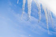 icicle Стоковая Фотография