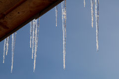 Icicle. On the house roof Royalty Free Stock Images