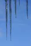 Icicle. Long icicles, with blue sky background Stock Image
