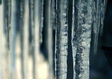 icicle Стоковое Изображение