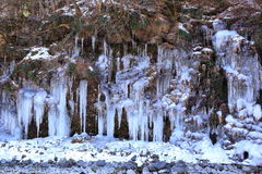 icicle Imagens de Stock