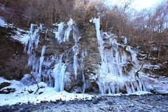 icicle Foto de Stock Royalty Free