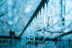icicle Fotografia Stock