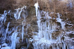 icicle fotos de stock royalty free