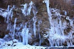 icicle Fotos de Stock Royalty Free