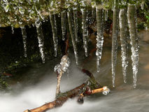Icicle. View of the creek with icicles Royalty Free Stock Photography