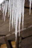 Icicle. Frozen icicles on old wooden house Stock Photography