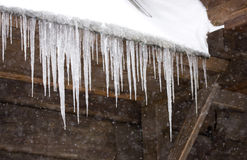 Icicle. Frozen icicles on old wooden house Royalty Free Stock Image