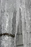 Icicle. Winter icicle Royalty Free Stock Photos