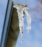 Icicle on a background of blue sky Royalty Free Stock Photos