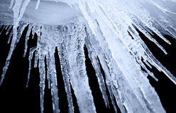 Icicle on a black background. Night shot of icicle on a black background Royalty Free Stock Images