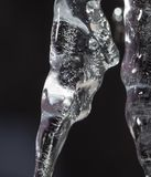 Icicle on a black background Stock Image