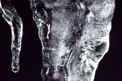 Icicle on a black background Stock Photography