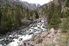 Icicle Creek Royalty Free Stock Photography