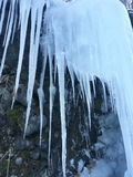 Icicle Curtain Royalty Free Stock Image